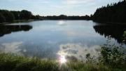 ferienpark-am-waldsee-harz-25