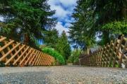 ferienpark-am-waldsee-harz-10