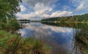 ferienpark-am-waldsee-harz-44