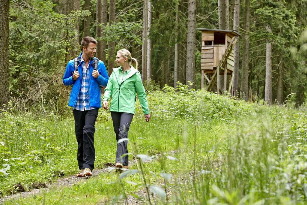 Foto Wandern im Harz
